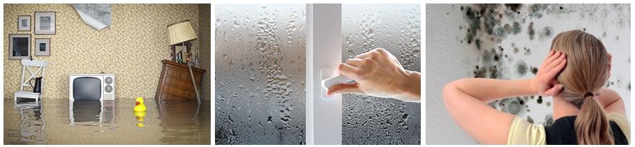 Как убрать повышенную влажность в квартире своими руками 79